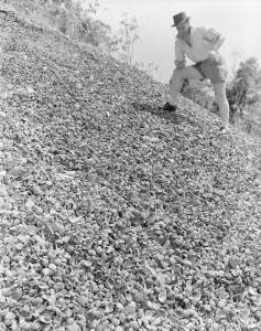 Aboriginal Shell Midden